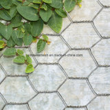 景色のための六角形の金網の網