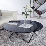 De Ovale Eettafel van /Vitreous van het glas met Roestvrije Benen (jk-A1027)