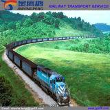 Remetente de confiança do transporte do frete de Xiamen
