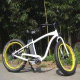최대 대중적인 뚱뚱한 타이어 전기 자전거 48V 500W (RSEB-505)
