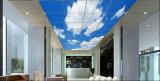 Luz del panel plana ultra fina del cuadro LED de Scenary de la luz de techo 40W con Ce/RoHS certificado