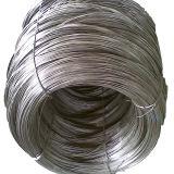 Alambre galvanizado electro de la alta calidad