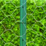 Reticolato esagonale della rete metallica per il paesaggio
