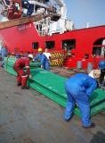FRP/Fiberglass que ralla para la nave