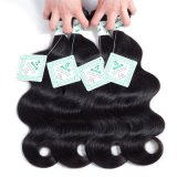 100% Virgin Hair Brazilian Remy Hair Extension Body Wave