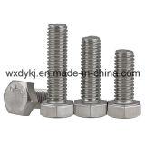 Boulon de tête de l'hexagone A2-70 de l'acier inoxydable 304