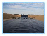 Film di materia plastica dell'HDPE Geomembrane/HDPE Geomembrane con il migliore prezzo