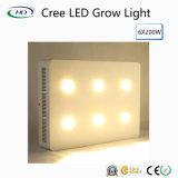 크리 사람 칩 6*200W LED는 상업적인 경작을%s 가볍게 증가한다