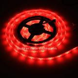 Lumière de bande chaude flexible du blanc 60LEDs/M SMD5050 RGBW DEL