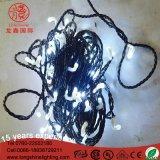 indicatore luminoso leggiadramente decorativo esterno di Christams della stringa di 6W 24V per la decorazione