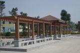 Pavilhão personalizado de WPC com serviço a longo prazo