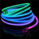 LED 전시를 위한 네온 코드 빛을 쫓고 광고하는 RGB