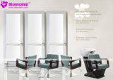 شعبيّة [هيغقوليتي] صالون مرآة [بربر شير] صالون كرسي تثبيت ([ب2007ف])