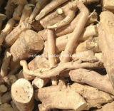 25:1 naturale puro ~200 dell'estratto della radice di Eurycomanone Tongkat Ali: 1