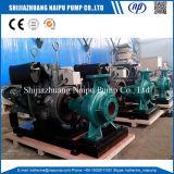 O diesel é bomba de água da irrigação do motor de série