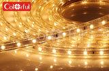 Alta tira flexible del brillo AC230V SMD5050 LED de la larga vida