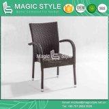 فندق [بروجت] حديقة قابل للتراكم يتعشّى كرسي تثبيت [بيترو] كرسي تثبيت