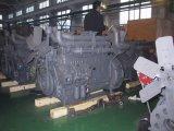 海兵隊員、トラック、発電機セット、農業、コーチのためのDeutzの予備品が付いているDeutz Mwm Tbd226b-3 /Tbd226b-4 /Tbd226b-6のディーゼル機関