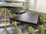 Fabricante del vidrio de la hoja / vidrio del flotador / vidrio templado para la construcción / muebles (T-TP)