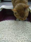 Vier Soorten Tofu de Draagstoel van de Kat met het Samendoen en de Controle van de Geur