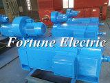motore elettrico di CC di uso della pressa per estrudere di 300V 250kw