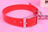 Collare variopinto caldo del cane di animale domestico di vendita (L007)