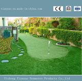 Tappeto erboso artificiale, fuori portello che modific il terrenoare la decorazione del giardino dell'erba