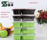 Casella di pranzo a gettare ecologica spessa competitiva dei 2 scompartimenti