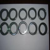 Desgaste de cerámica del anillo de cierre del carburo de silicio