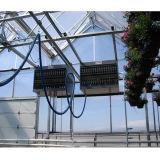 Дом Multi-Пяди Двойн-Пленки Hydroponic аграрная зеленая