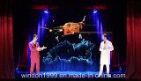 Система проекции привидения перца фольги Eyeliner Musion голографическая для выставки в реальном маштабе времени