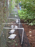 Galvanisierte Belüftung-überzogene Huhn-Maschendraht-sechseckige Draht-Filetarbeit