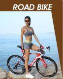 Hochwertiger Straßen-Fahrrad-Kohlenstoff mit hydraulischer Scheibenbremse Lingdong800