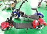 2017 El más reciente inteligente rueda grande 1000W 60V Energía bici del motor de la motocicleta rápida
