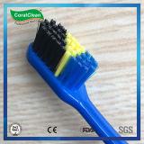 Einzelner Farben-Griff, Zahnbürste des Großhandelserwachsenen