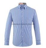 ثلاثة [كلور من] [كتّون] [ستريبد] قميص