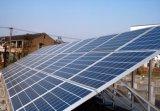 Eficacia alta 265W de Haochang encima del módulo solar monocristalino para el sistema Red-Atado