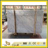 Lastra di marmo di Bianco Carrara per la pavimentazione di pietra