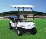 De speciale Auto van de Ziekenwagen van het Elektrische voertuig Elektrische (DEL3022GT, 2-Seater)