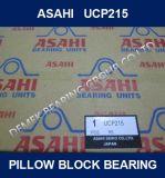 Het Blok die van het Hoofdkussen van Asahi UCP215 dragen