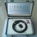 삼지창 Ds730 디지털 센서 이태리제