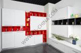 N&L Houten Keukenkasten van het Meubilair van het Huis van de Leverancier van de keukenkast de Moderne met MFC Raad