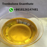 Stéroïdes anabolisant crus Parabolan de poudre de Tren Trenbolone Enanthate