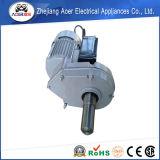 Электрические двигатели шестерни AC одиночной фазы 220volt малые
