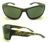Le plastique neuf de créateur de marque folâtre des lunettes de soleil