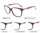 Blocchi per grafici ottici di vendita caldi di Eyewear dell'acetato della donna con la cerniera della molla