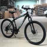 高品質のスポーツカーボンマウンテンバイク(ly17)