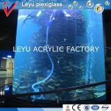 アクリルシリンダーアクアリウムの魚飼育用の水槽