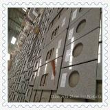 Bancadas brancas chinesas da cozinha do granito G603 Pangdang