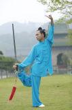 Vêtement Long-Sleeved à haute teneur du ressort des hommes de Chi de Wudang Tai de Taoism et du lin textile d'été